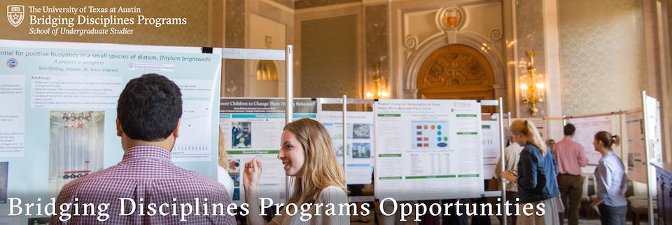 Bridging Disciplines Programs Opportunities