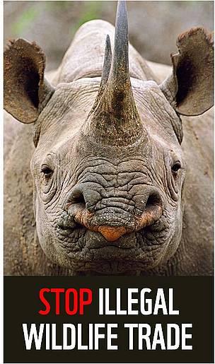 WWF-EU campaign to stop illegal wildlife trade
