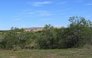 Austin Waste Management Wildlife Park