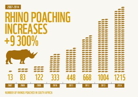infographic-rhino-poaching